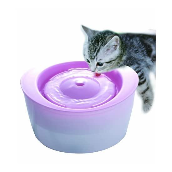 GEX 格思 宠物猫用自动循环饮水机