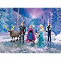 Disney Frozen Complete Story Playset 迪斯尼动画片《冰雪奇缘》手办玩偶套装