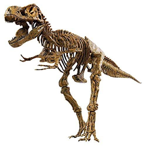 Elenco Science Tech T-Rex Skeleton 恐龙骨架模型