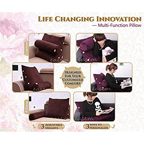 Easem Lumbar Support, Multi-purpose Cushion, Ergonomic Pillow (Medium, Beige)