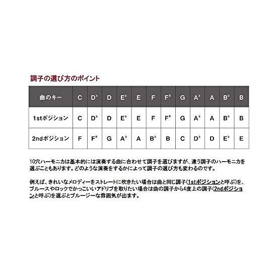 Suzuki HA-20-C Promaster Hammond Professional 10-Hole Diatonic Harmonica, Key of C